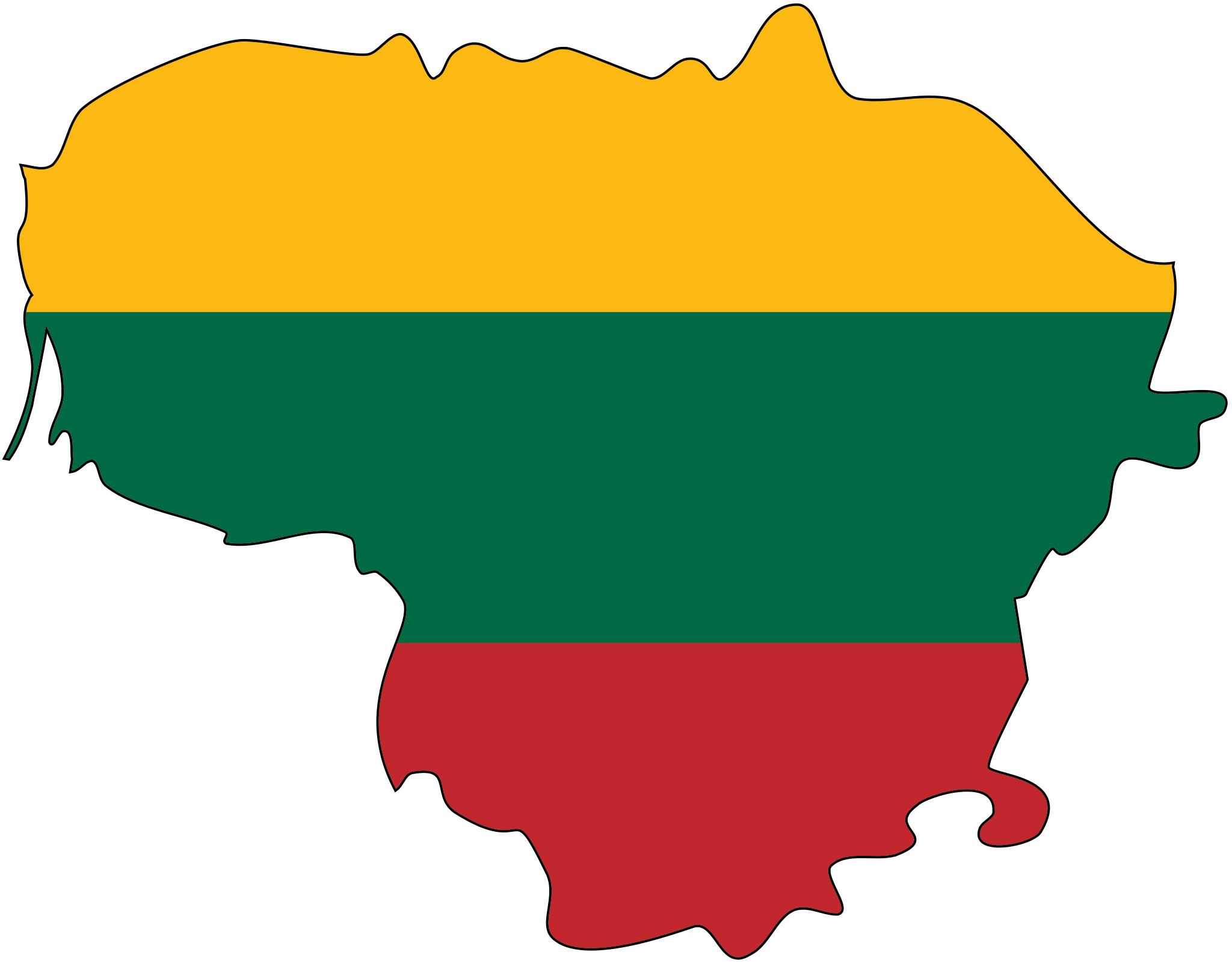 """Progetto di Scambio di Giovani in Lituania """"Your voice Matters"""" (12-18 dicembre 2016)"""
