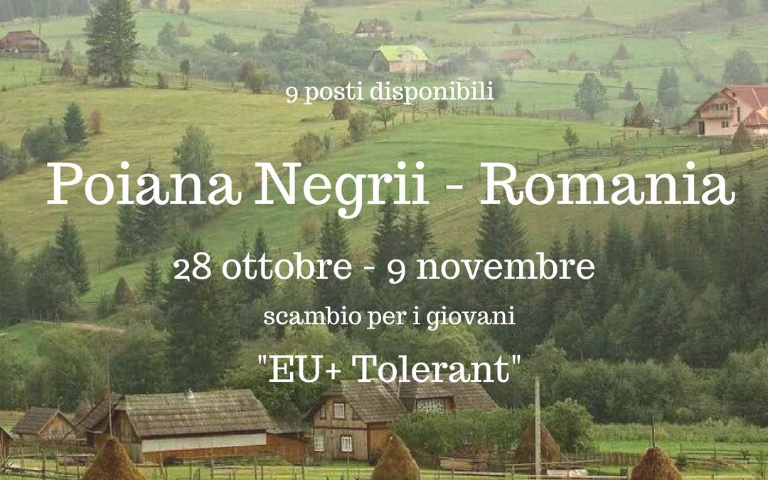 EU+ TOLERANT – Scambio Giovani a Poiana Negrii (Romania). 28.10-09.11.2018