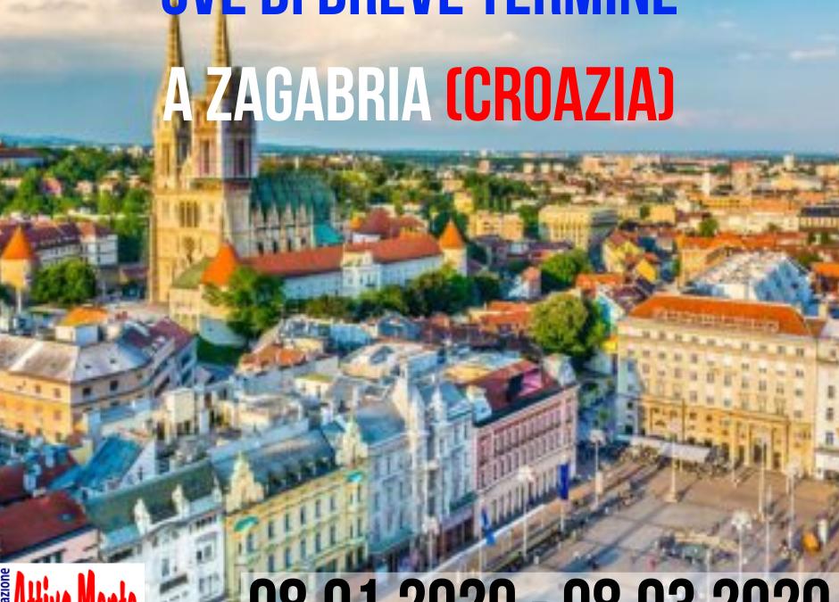 VolunTEEN – SVE a Zagabria (8.01.2020 – 8.03.2020)